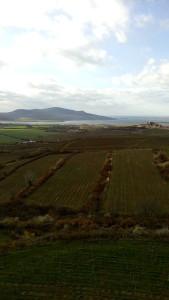 pohled od rozhledny Maják směrem na rozhlednu Dalibor